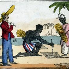 """Haïti n'a jamais été la """"Perle des Antilles"""" pour les haïtiens !"""