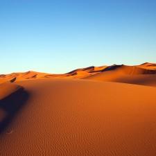 Au revoir Sahara !
