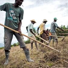 Le Konbit, L'âme de la paysannerie haïtienne